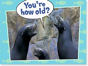 Birthday Card - YOu're how old?  Ar! Ar! Ar! - 10861 | Leanin' Tree