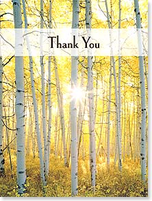 Thank You & Appreciation Card - Thank You | John Fielder | 11860 | Leanin' Tree
