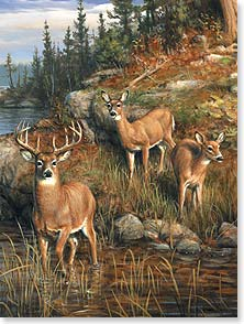 Birthday Card - Another birthday is here...'Oh deer, oh deer, oh deer!' | Joe Hautman | 13107 | Leanin' Tree