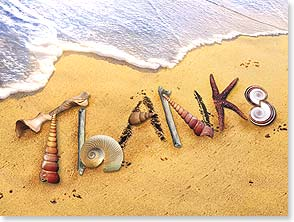 Thank You & Appreciation Card - Oceans of Thanks | Connie Haley | 13208 | Leanin' Tree