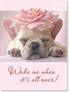 Encouragement & Support Card - Wake Me When It's Over | Christina Bynum Breaux | 13316 | Leanin' Tree
