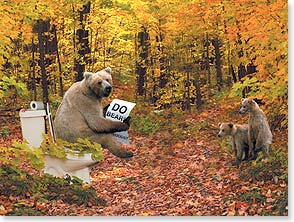 Birthday Card - Do you look older?  Well, do bears s#*@ in the woods? - 13419 | Leanin' Tree