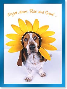 Birthday Card - Forget about 'Rise and Shine'...Sleep in! | Kimball Stock | 13424 | Leanin' Tree