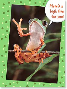 Birthday Card - Here's a high five - well, high four - and I'll owe you one | Minden Pictures | 13436 | Leanin' Tree