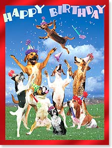 Birthday Card - Release your inner party dog! | John Lund | 13450 | Leanin' Tree