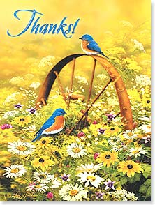 Thank You & Appreciation Card - Thanks! | Greg Giordano | 13511 | Leanin' Tree