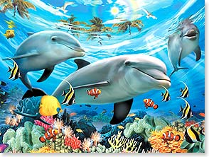 Birthday Card - Staff Pick - Dolphin Dreams | Howard Robinson | 13700 | Leanin' Tree