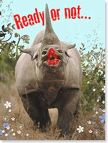 Birthday Card - Rhino Kisses | Kimball Stock | 13763 | Leanin' Tree
