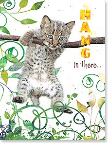 Encouragement Card - Staff Pick - Hang In There | Lisa and Mike Husar | 13777 | Leanin' Tree