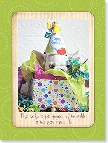 Birthday Card - Getting into Trouble | Lisa Jane | 13902 | Leanin' Tree