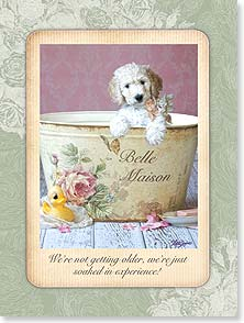 Birthday Card - Soaked in Experience | Lisa Jane | 13903 | Leanin' Tree