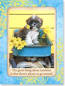 Friendship Card - Staff Pick - Sending A Little Sunshine | Lisa Jane | 13910 | Leanin' Tree