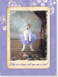 Thank You & Appreciation Card - Life is a Stage and You Are a Star! | Lisa Jane | 13913 | Leanin' Tree