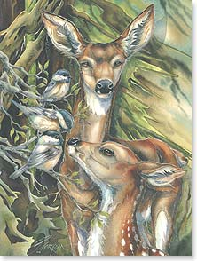 Birthday Card - Staff Pick - Wildlife | Birthday Wishes To Enjoy | Jody Bergsma | 15617 | Leanin' Tree