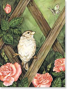 Thinking of You Card - You're In My Thoughts | Jane Maday | 15645 | Leanin' Tree