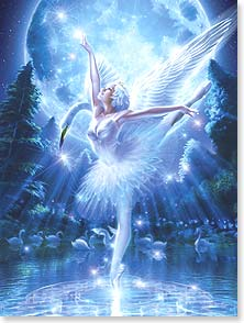 Birthday Card - Ballet Swan Fairy | SHU | 15675 | Leanin' Tree