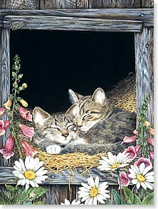 Blank Card - Barn Kitties | Jane Maday | 15795 | Leanin' Tree
