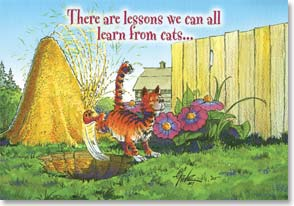 Encouragement & Support Card - Life Lessons from a Cat - 16238 | Leanin' Tree