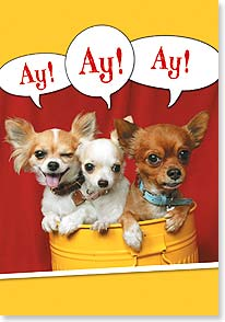 Birthday Card - Funny | Chihuahua Birthday Greetings | Fotosearch | 16399 | Leanin' Tree