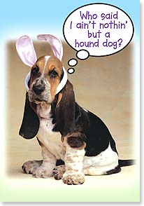 Easter Card - Easter Basset | Fotosearch | 16579 | Leanin' Tree