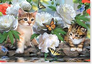 Anytime Wish for You Card - Purrfectly Wonderful Day | Howard Robinson | 16720 | Leanin' Tree