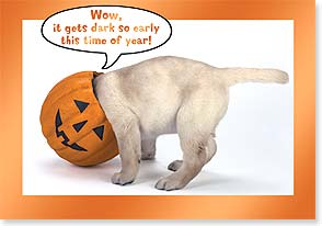 Halloween Card - Gets dark so early this time of year!  - 16800 | Leanin' Tree