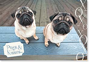 Birthday Card - Pugs, Kisses & Birthday Wishes | Grace Chon | 16956 | Leanin' Tree
