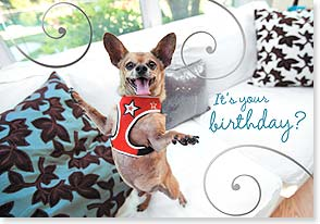 Birthday Card - A happy dance for your birthday | Grace Chon | 16957 | Leanin' Tree