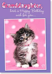 Birthday Card - Granddaughter - For squeezable, loveable, huggable you. | Rachael Hale® | 18321 | Leanin' Tree