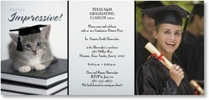 Graduation Invitation - Paws to Celebrate! | Rachael Hale® | 1_2000861-P | Leanin' Tree