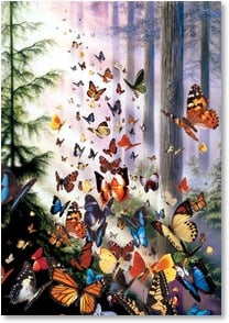 Encouragement & Support Card - May your cares fly away... | David Penfound | 1_2001341-P | Leanin' Tree