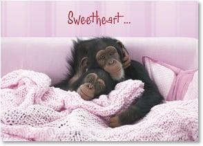 Love & Romance Card - You snuggled into my heart! | Wild-Side Brands Ltd | 1_2001700-P | Leanin' Tree