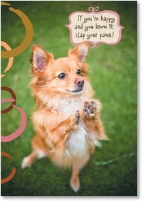 Congratulations Card - You deserve a round of a-paws! | Grace Chon | 1_2002486-P | Leanin' Tree