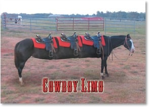 Anytime Wish for You Card - Cowboy Limo; Psalm 128:5 - 1_2003244-P | Leanin' Tree