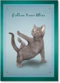 Motivation & Inspiration Card - Follow Your Bliss | Yoga Dogs®/Yoga Cats | 1_2003364-P | Leanin' Tree