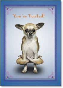 Compliment / You're Special Card - You're Twisted! That's a compliment, of course.  | Yoga Dogs®/Yoga Cats | 1_2003370-P | Leanin' Tree