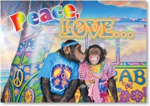 Anniversary Card - Peace, Love & Monkeying Around - 2000253-P | Leanin' Tree