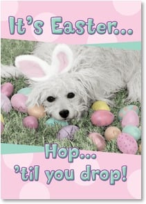 Easter Card - Hop 'til you drop! Hoping your Easter is filled with fun! | Karen Frasco | 2000747-P | Leanin' Tree