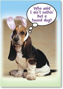 Easter Card - Greetings From the Easter Basset | Fotosearch | 2000749-P | Leanin' Tree