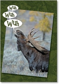Birthday Card - That's Moose for Happy Birthday! | Claude Steelman | 2000824-P | Leanin' Tree