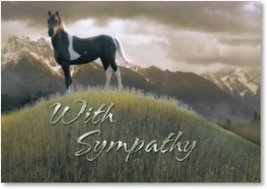 Sympathy Card for Horse - Waits Patiently at the End of the Trail | Steve Hunziker | 2000840-P | Leanin' Tree