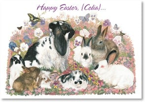 Easter Card - Sending Some Warm Fuzzies Your Way | June Payne Hart | 2001026-P | Leanin' Tree