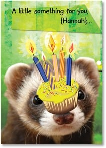 Birthday Card - You're more than a little special. | Age Fotostock | 2001045-P | Leanin' Tree