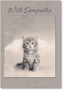 Sympathy Card for Pet - A Kitty Door in the Pearly Gates | rachaelhale® Dissero Brands | 2001737-P | Leanin' Tree