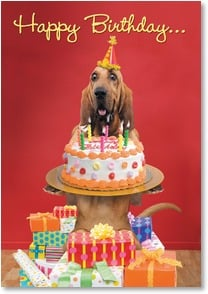 Birthday Card - You Party Hound! - 2001785-P | Leanin' Tree
