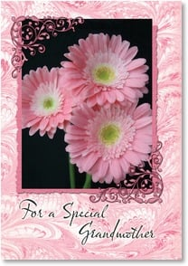 Birthday Card - For a Special Grandmother | Phillips Allrich | 2001968-P | Leanin' Tree