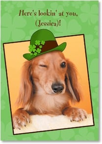 St. Patrick's Day Card - A Doggone Good St Patrick's Day | Getty Images | 2002068-P | Leanin' Tree