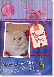 Thank You Card from Pet - Thank you from the cat! | Connie Haley | 2002191-P | Leanin' Tree