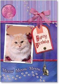 Birthday Card from Pet - Meow, Meow!  From the cat! | Connie Haley | 2002192-P | Leanin' Tree