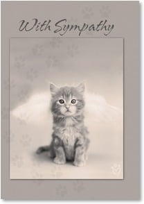 Sympathy Card for Pet - Sympathy on the loss of your dear friend | Rachael Hale® | 2002348-P | Leanin' Tree